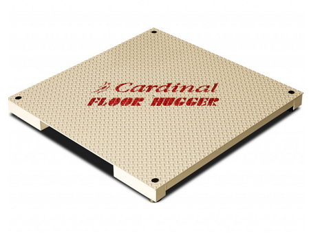 Electronic Floor Sacles